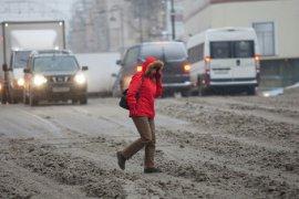 В пятницу ГИБДД наказала 53 брянских пешехода-нарушителя