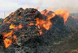 В Клетнянском районе сгорело 60 тонн сена