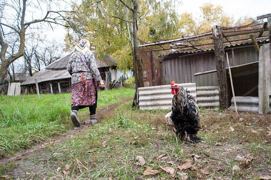 Ухитрой жительницы чернобыльского района брянский суд отобрал дом