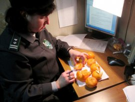 В Брянск не пустили 42 тонны мандаринов