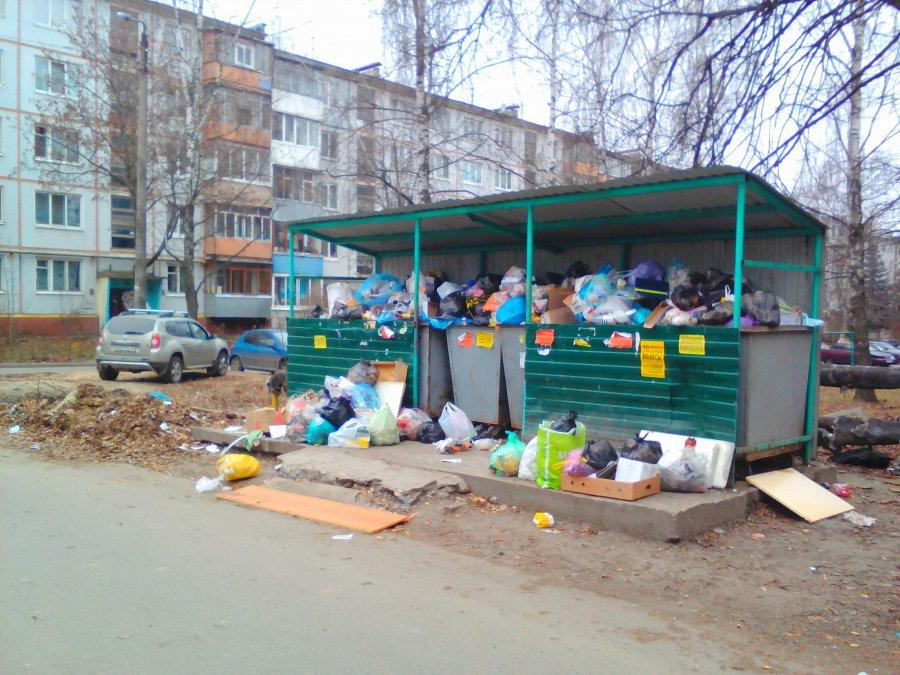 В Брянске возле детсада №125 сняли на фото мусорный рай для собак