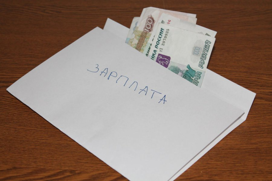"""Брянских бизнесменов призвали не платить """"серые зарплаты"""""""