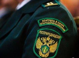 В Севске прокурор велел чиновникам убрать свалку возле маслозавода