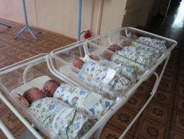 В новогоднюю ночь в Брянске родились пять малышей