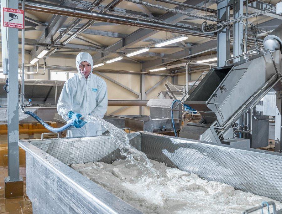 «Умалат» выводит сыр на экспорт