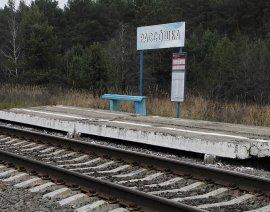 Поезд Брянск-Комаричи сделает остановку в Рассошке
