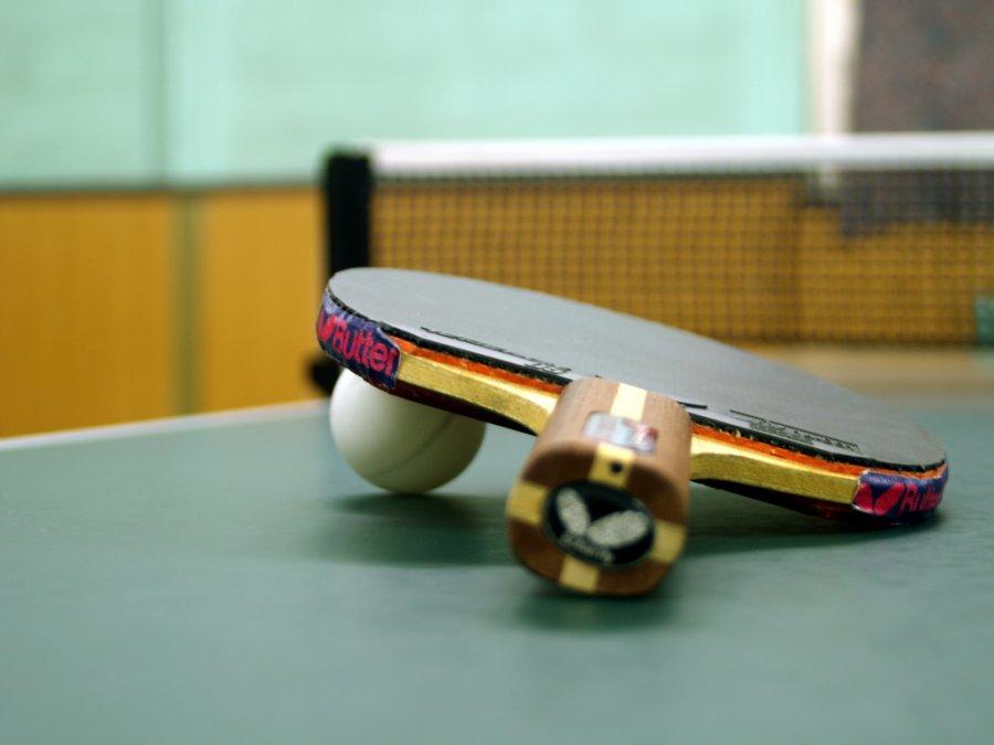 скачать бесплатно игру пинг понг - фото 9