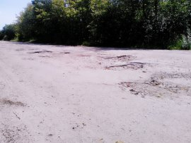 Жители брянского поселка пожаловались на «убитую» дорогу и глухоту властей