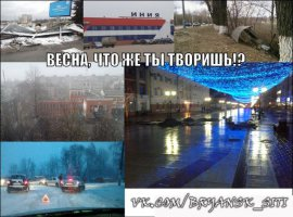 В Брянске ликвидируют последствия урагана