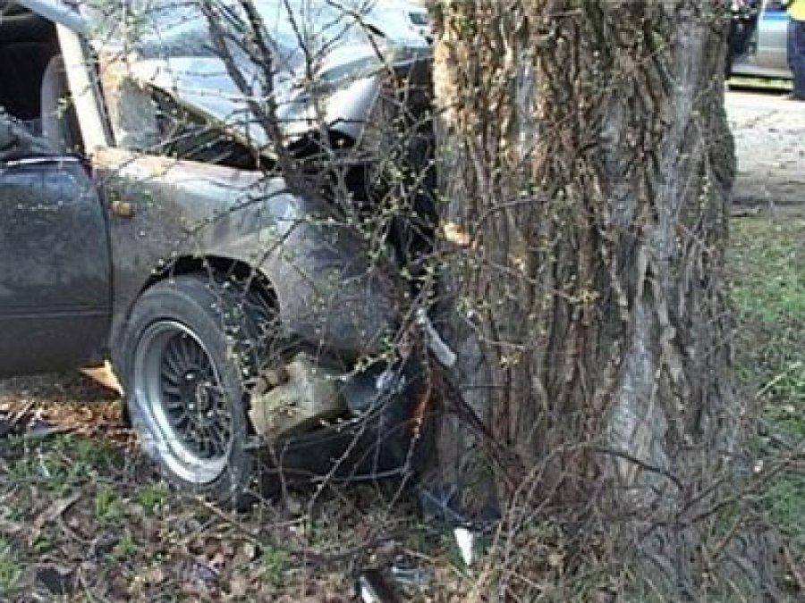 ВБрянском районе 22-летний автомобилист протаранил дерево