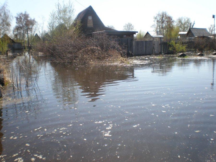 В Брянске на ликвидацию дождевого озера выделят 80 млн. руб.