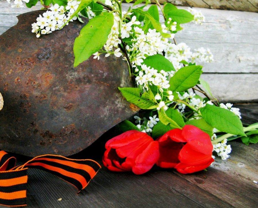 Найти фото девушки со цветами