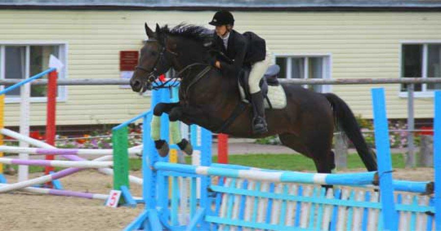В Кокино пройдёт турнир по конному спорту
