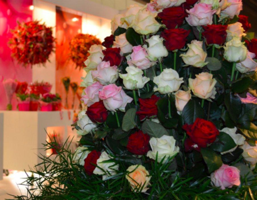 Брянская область вошла в 10-ку регионов РФ, лидирующих поэкспорту цветов