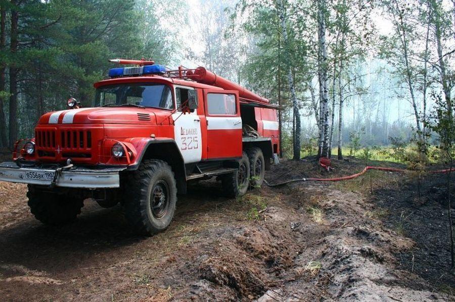 Картинки пожарной машины в лесу