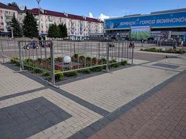 В Брянске перед битвой Россия - Хорватия огородили цветы