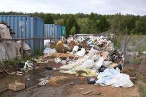 В Брянской и Смоленской области свалки повредили 90 гектаров почвы