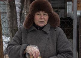 Бывшая брянская учительница создала приют для бездомных собак