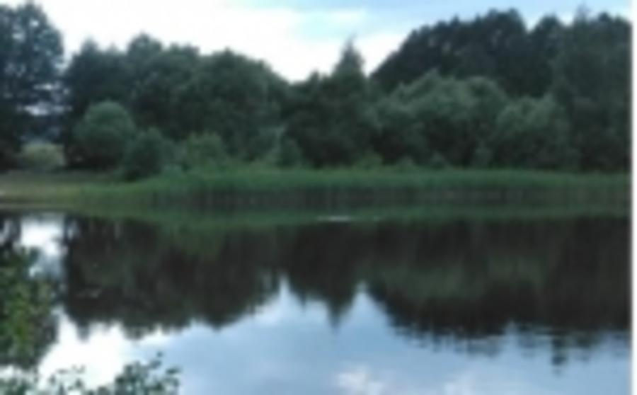 В Брянском районе в реке Снежети утонул 38-летний мужчина