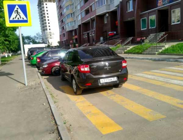 В Брянске наглый автохам на «Рено» перекрыл пешеходный переход