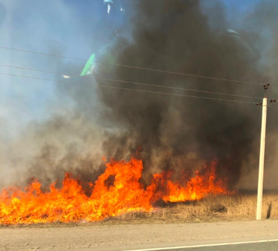 Брянск попал в огненный плен горящей сухой травы