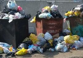 Брянских коммунальщиков заставят убрать свалки на улицах города