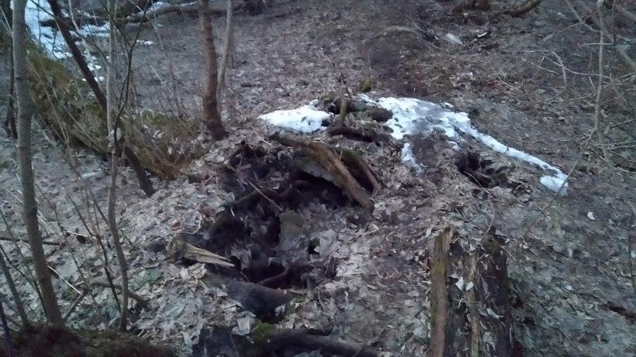 В Брянске вспомнили о смертельно опасной трубе возле Десны