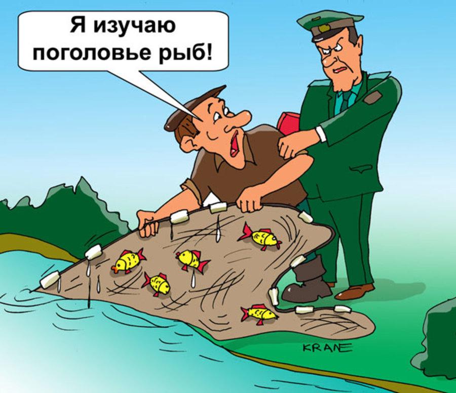 Прикольные картинки браконьеры