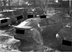 Житель Брянска назвал способ спасения от автомобильных вуайеристов