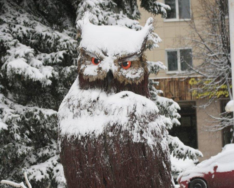 На Брянск 1 декабря обрушится снегопад и сильный ветер