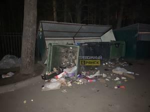 В Брянске заметили мусорный беспредел в микрорайоне Сосновый Бор