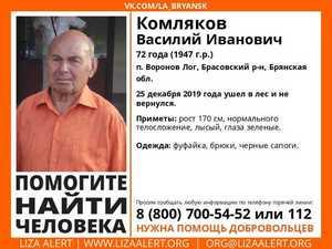 В Брянской области нашли пропавшего 72-летнего Василия Комлякова