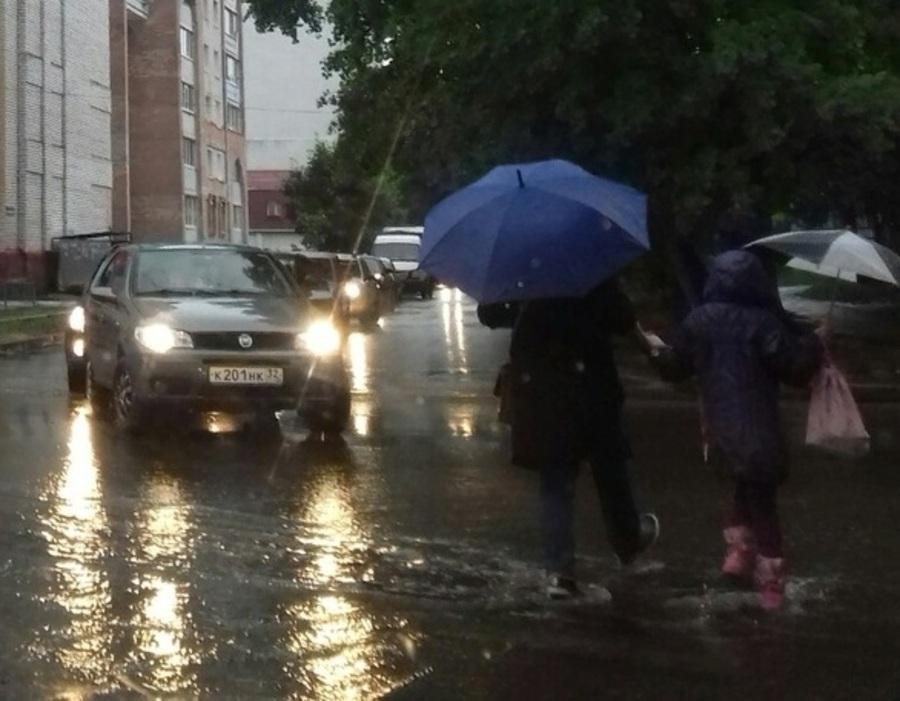 Глава Брянска во всем городе пообещал построить ливневую канализацию
