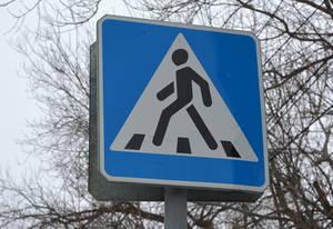 В Дубровском районе привели в порядок дорожные знаки