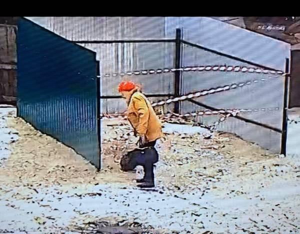 В Трубчевске устроили фотоохоту на разбрасывающих мусор пенсионеров