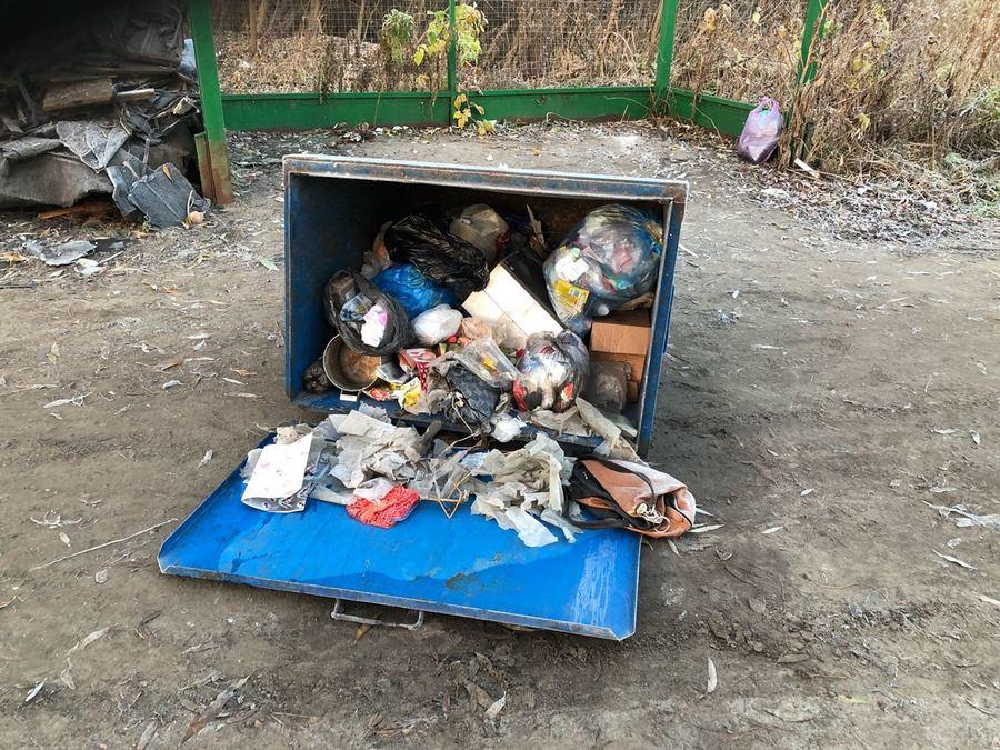 В Белых Берегах обнаружили мусорных «барабашек»