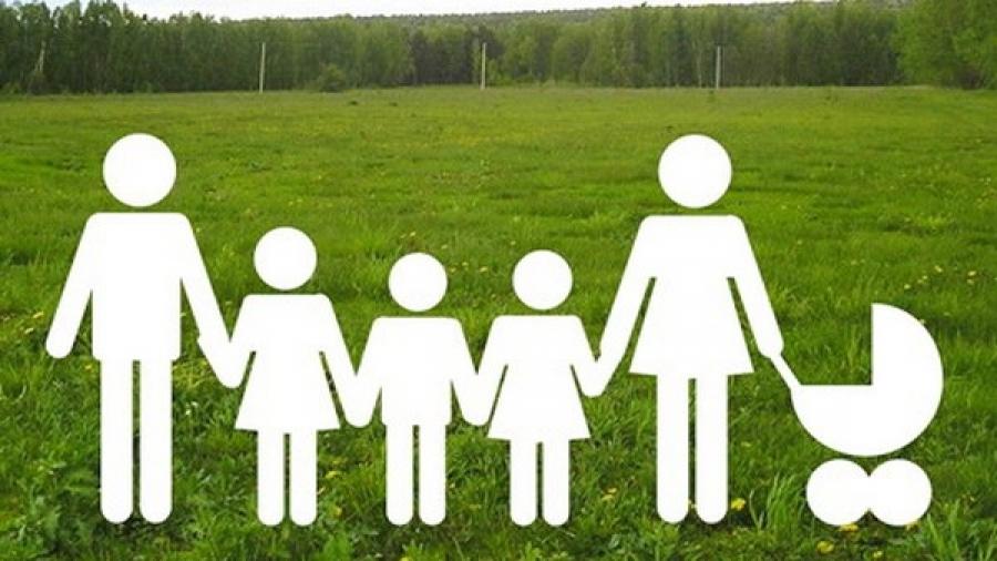 Брянским многодетным семьям выделят 152 земельных участка