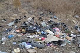 Брянские прокуроры потребовали убрать свалки на Володарке