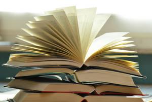 В Брянске собирают книги для сельских библиотек