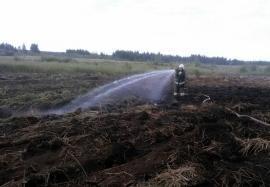 В Погарском районе более 20 человек тушат торфяной пожар