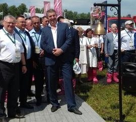 Брянских чиновников и депутатов одели в розовые бахилы