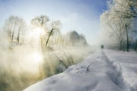 Брянцев 16 февраля ждет морось и туман