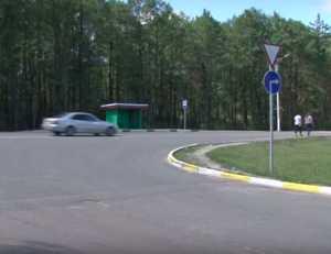 Брянских водителей возмутила новая разметка у автозаправки «Роснефть»