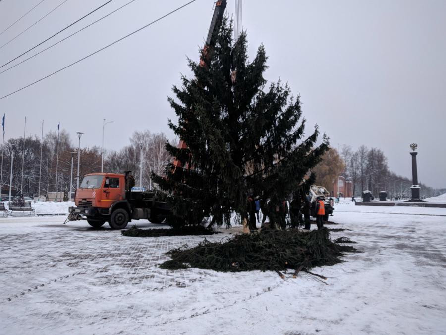 В Брянске на Кургане Бессмертия установили новогоднюю ёлку