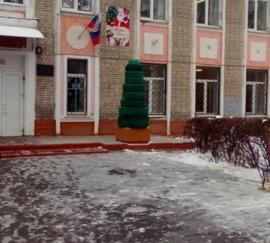 В Брянске возле школы на Новом Городке заметили суровую елку
