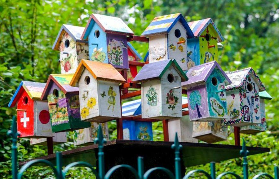 Жителям Брянска предложили смастерить скворечники для птиц