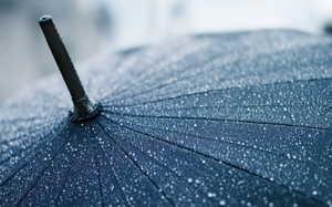 На Брянщине в воскресенье обещают дождь и 7 градусов тепла