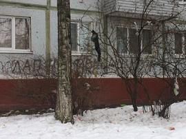 В Брянске начали выбрасывать мусор из окон на улицу