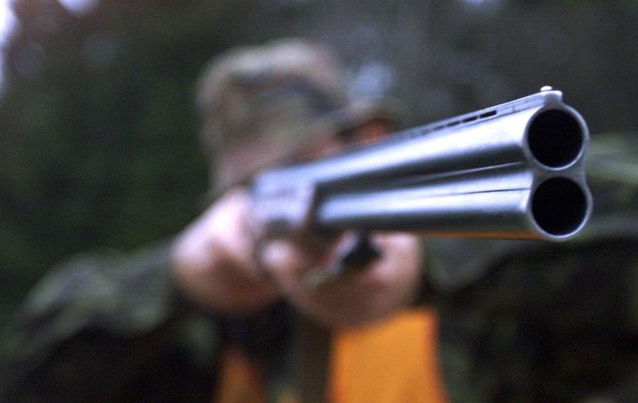 Унечскому браконьеру грозит 2 года тюрьмы за убийство кабана