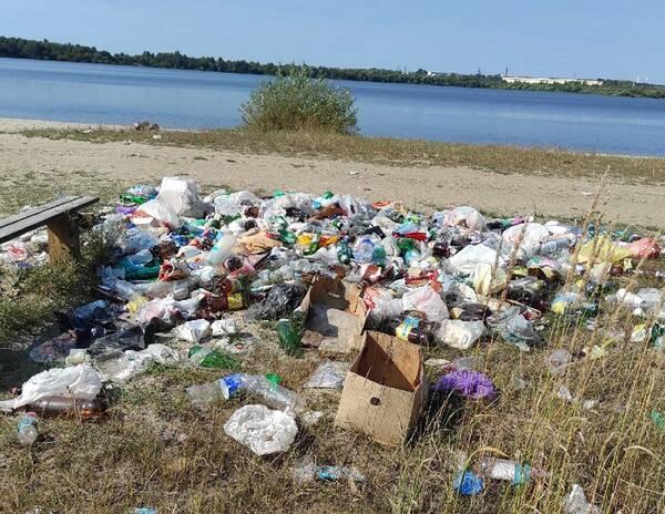 Берег озера Орлик в Брянске превратили в свинарник к концу купального сезона